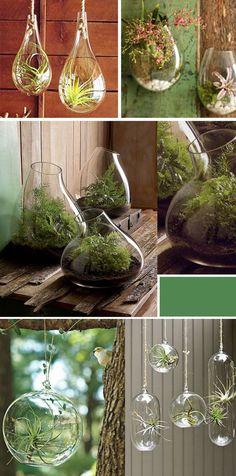plants2.jpg 600×1,212 pixeles