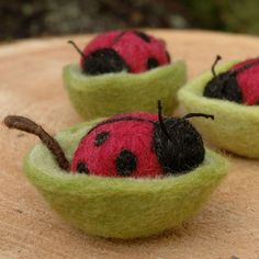 Lady bugs in leaf nests