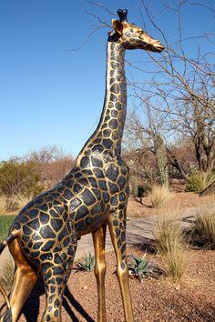Rancho Safari Trail -- a unique favorite Sahuarita Arizona, Green Valley, Public Art, Tucson, Giraffe, Safari, Trail, Scene, Places