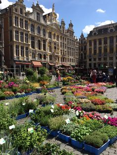 Brussels - so much more than beer and chocolate!