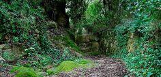 Ruta por el Barranco d'Algendar (Menorca)