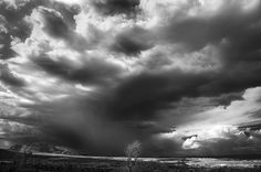 I took this picture while hiking with a friend this afternoon in Prescott.  We were hiking on a small plateau with an almost 360 degree view.  This is looking to the north where we could see lightning strikes.  We almost never see skies like this where I live, in eastern San Diego County.  I was so impressed.  This is an infrared image converted to black and white, and then tarted up a bit in Photoshop.  For more information about how I do infrared, or to see more infrared pictures, please…