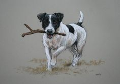 Jack Russell Terrier cute dog LE fine art print Sticks!' from an original soft pastel and charcoal sketch