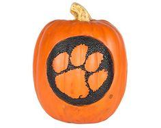Clemson Pumpkin  #Clemson #clemsontigers #tigers #clemsonuniversity clemson-tigers