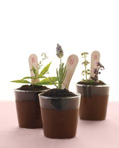 """""""Potted"""" Chocolate Pudding by marathastewart: Perfect for a party or a bridal shower! #Pudding"""