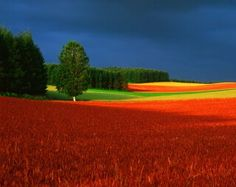 JAPAN - Hokkaido  photography by Shinzo Maeda