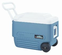 You're going to need a cooler, this one is good for two people, plus it has wheels so you can use it for festivals and parties in normal life. Igloo 40 Quart Maxcold Extended Performance Wheeled Cooler