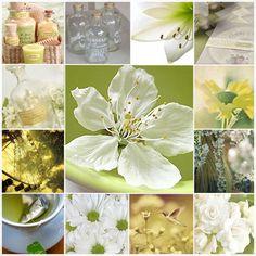 sage green, soft yellow, white