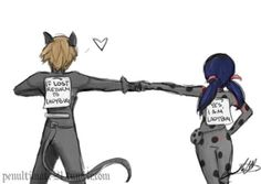 421 Best Miraculous Ladybug and Chat Noir images in 2019