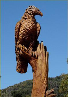 Wood Carving, Eagle, Oak Glen, CA 4-27 | Flickr - Photo Sharing!