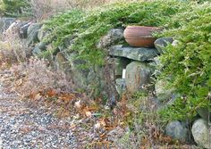using large boulders in landscaping - Google Search