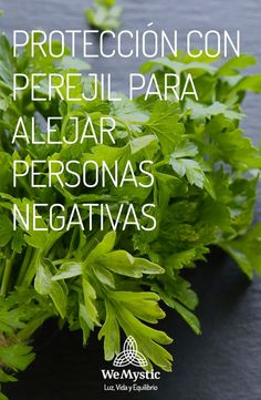 Protección con Perejil Oras, Wicca, Reiki, Parsley, Celtic, Cancer, Natural Treatments, Herbs, Oil