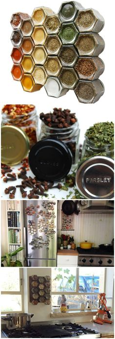 Everything Spice Kit: 24 Magnetic Jars Filled with Standard Organic Spices. #affiliate