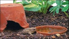 Content in a Cottage: Welcome toads to your garden ~ Tutorial for making a toad house . . .