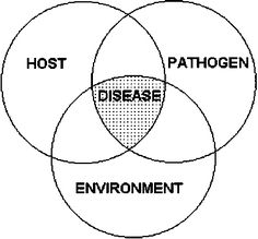 disease occurrence- the interactions between host, pathogen, and the environment can cause disease.