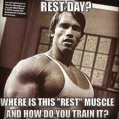 Arnold Swartzeneger - rest day? Where's is the rest muscle and how do you train it?