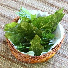 Dandelion greens chips- coat leaves in OO, bake at 350 for 10 min, sprinkle with sea salt.