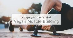 Are you trying to get into Vegan Muscle Building? Here are our 5 Top Tips that will help you eat the right food & forget about the common myths.