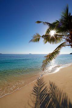 Tropical beach, Fiji Islands.