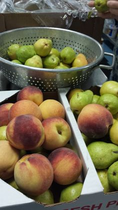 Fresh and local fall fruits.