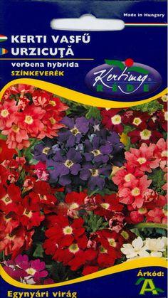 Egynyári virágok : Kerti vasfű Sparkle Hibrid szk. Pandora, Sparkle