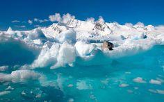 Artica or Antartica?