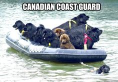 Canadian Coast Guard :)