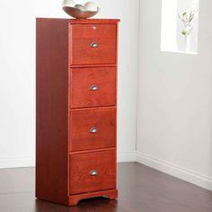 Cabinets fire and king on pinterest stylish fireproof file cabinet httpjeffliaostylish malvernweather Choice Image