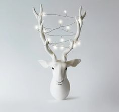 Gifts, Homeware & more