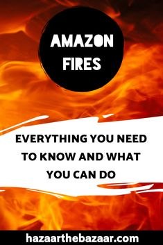 The fires in the Amazon have been raging for over three weeks now, but there's a lot more to the story than that. Here's everything you need to know and how you can help. What You Can Do, Rage, Need To Know, Everything, Burns, Canning, Amazon, Brazil, Posts