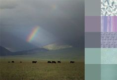 Idaho Storm #ColorPlayFriday #color #palette #colorpalette #colorinspiration #ilovecolor #fabric http://123quilt.blogspot.com/2016/07/color-play-friday-idaho-storm.html