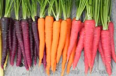 Carrots are the core veggie, normally their color is orange, but we can also find them red, purple, yellow or white color.