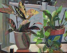 Plants. Carole Rabe