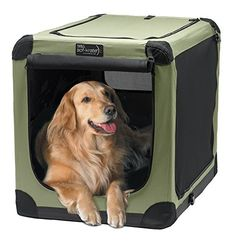 A Selection Of The Best Dog Crates