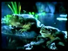 The Original First Budweiser Frogs Commercial