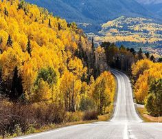 """@materas: """"I'm beginning to believe that all roads lead to Telluride. I almost went off the road so many times as I was driving through the area in the past week. It's amazing I didn't cause an accident I was so distracted! 
