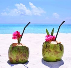 28ed6d906 Image about love in healthy and yummy 🍉🍌🍓🍪🍸 by Elisa ♔. Summer Beach  ...