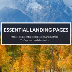 Wondering what real estate landing page can help you capture leads? Here's one…