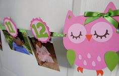 Owl Party - First Year Photo Clothespin Banner - Pink and Green Owl Themed Parties, Owl Birthday Parties, Birthday Ideas, Owl First Birthday, Girl Birthday, Owl Party Decorations, Owl 1st Birthdays, Picture Banner, Owl Banner