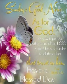 Good Morning Prayer, Morning Prayers, Sunday Morning, Happy Sunday Quotes, Morning Quotes, Wonderful Day Quotes, Sunday Greetings, I Love You Lord, New Advertisement