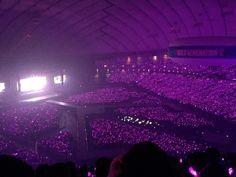 Concert Crowd, Bts Concert, Concert Stage, Dream Job, Dream Life, Famous Movie Directors, Army Photography, Blackpink Debut, Dream Concert