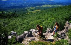 Beech Fork State Park Hiking   West Virginia Department of Commerce ..