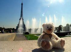 Teddy in paris