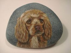 Spaniel Dog portrait hand painted on a rock - by Ann Kelly