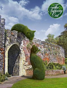 The Topiary Cat meeting a friend over an ancient wall. This wall is actually the postern gate at Hertford Castle, England.