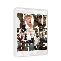 You Remind Me Of The Babe #Canvas #Labyrinth #Movie #Jim #Henson #David #Bowie #Gifts #Merchandise #Film 80's #Retro www.labryinthmovie.co.uk