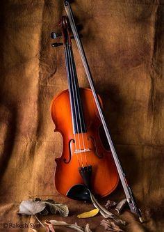 Rakeshsyal's Photos - ViewBug.com