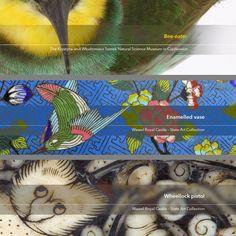 """""""Birds"""" / Author: Wojciech Szczekan / CC-BY 3.0 PL"""