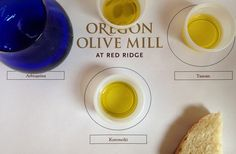 Slow Food Portland @ Red Hills Farm for an Olive Oil Tour