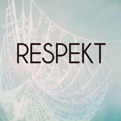 @makroklid #makroklid #citaty #budoucnost #vira #zvidavost #zmena #zmenajezivot #uhelpohledu #motivace #moznosti #zivot #vule #vnimani #respekt #respektuj Fit Quotes, Never Give Up, Adidas Logo, Respect, Fitness Quotes, Exercise Quotes, Workout Quotes